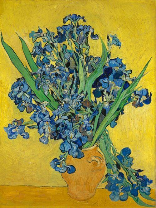 Vincent Van Gogh Vaso con Iris