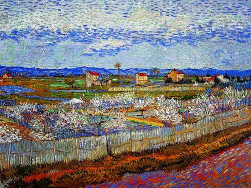Vincent Van Gogh - Alberi di pesco in fiore
